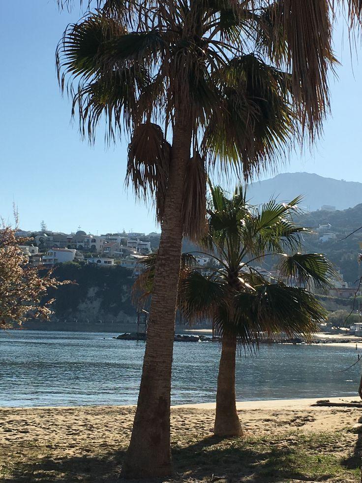 Mer d'huile, soleil, palmiers sur la plage d'Almyrida, où se trouve les appartements de la résidence ALMYRIDA SANDS