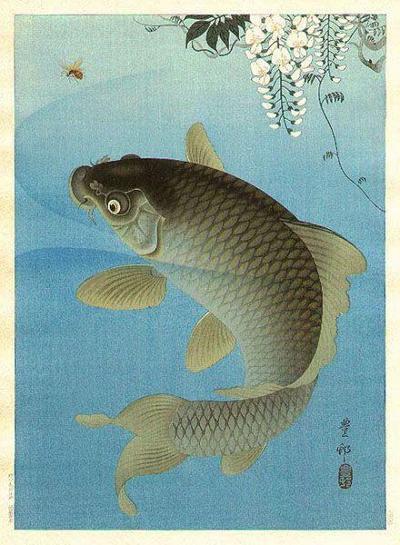 hanga gallery . . . torii gallery: Carp and Wisteria by Ohara Koson