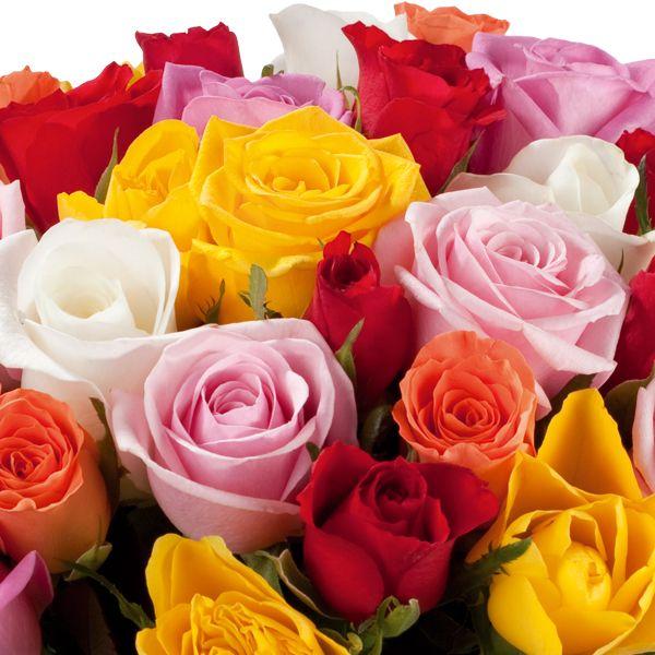 Brassée du fleuriste 40 roses