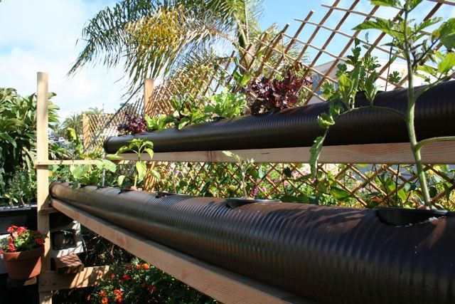 Aquaponic Grow Bed System | Check out my personal Aquaponics project at www.davaoaquaponi...