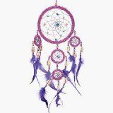 Dreamcatcher Beaded Purple Feathers Iridescent
