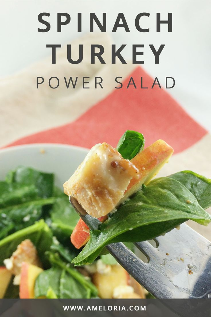 Quick and healthy spinach turkey salad with apples, goat cheese and pecans. Click for a printable recipe. | Ameloria Wellness