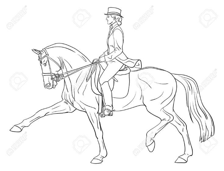 Ausmalbilder Pferde Dressur ~ Die Beste Idee Zum Ausmalen von Seiten