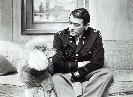 sweet dog with Gregory Peck