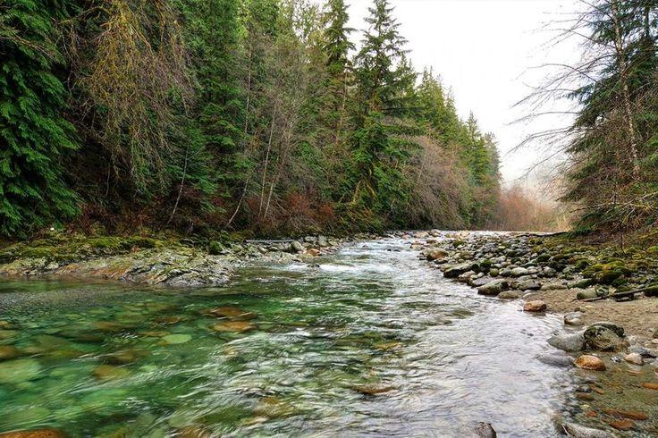 Cultural Resource Management - Environmental Monitoring - Northern BC Stream