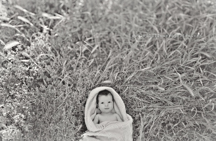 big eyes. lottsa grass. Joy Prouty does it poetically.