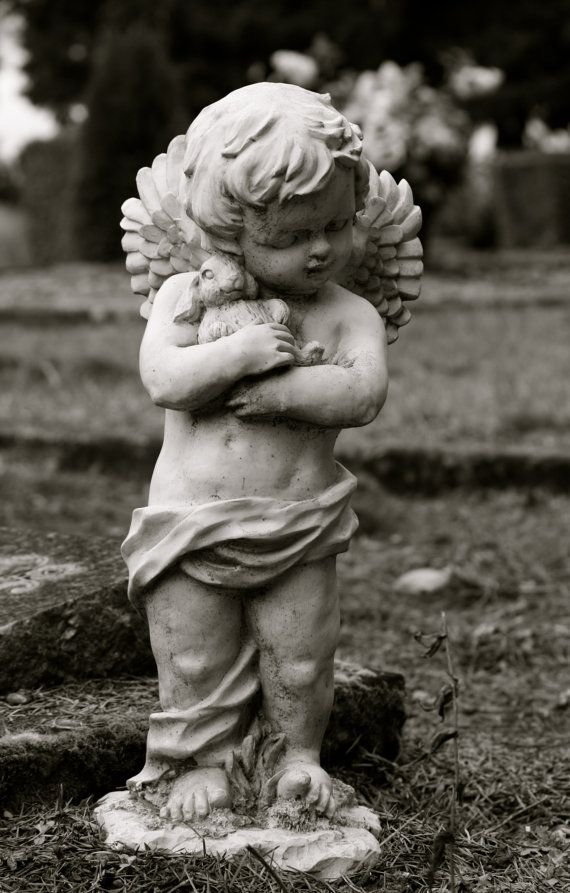 Garden Statue Cherub Angel Little boy holding his by SandraLynns