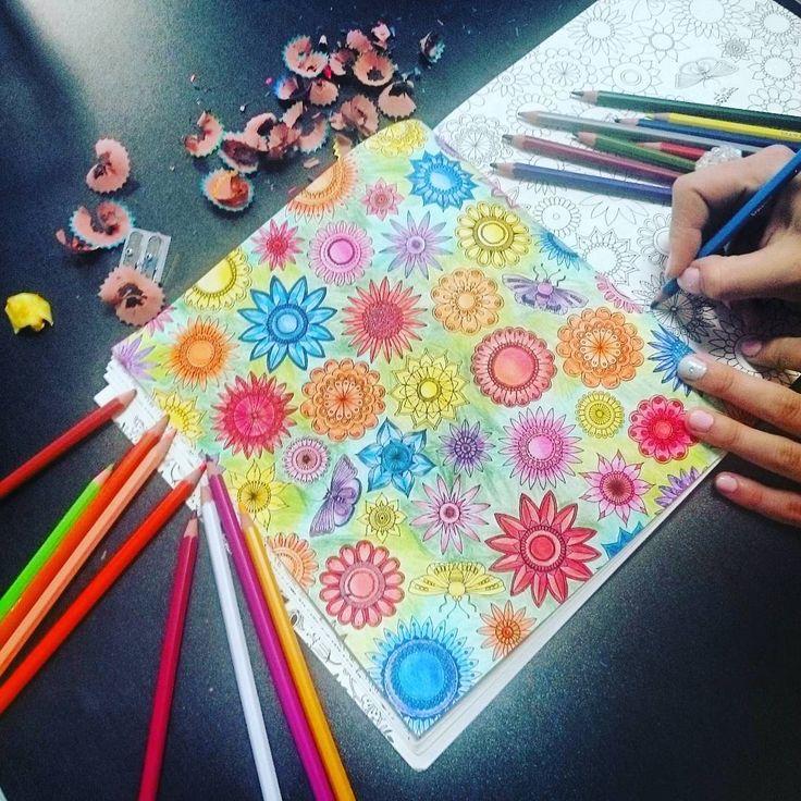 """""""Wciągnęły nas  #johannabasford #kolorowanki #kolorowanka #koloruje #tajemnyogrod #beautiful #color #basford #secretgarden #tajemny #coloringbook…"""""""