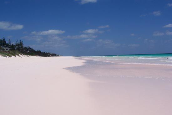 Yes, the sand really is pink....Eleuthera, Bahamas