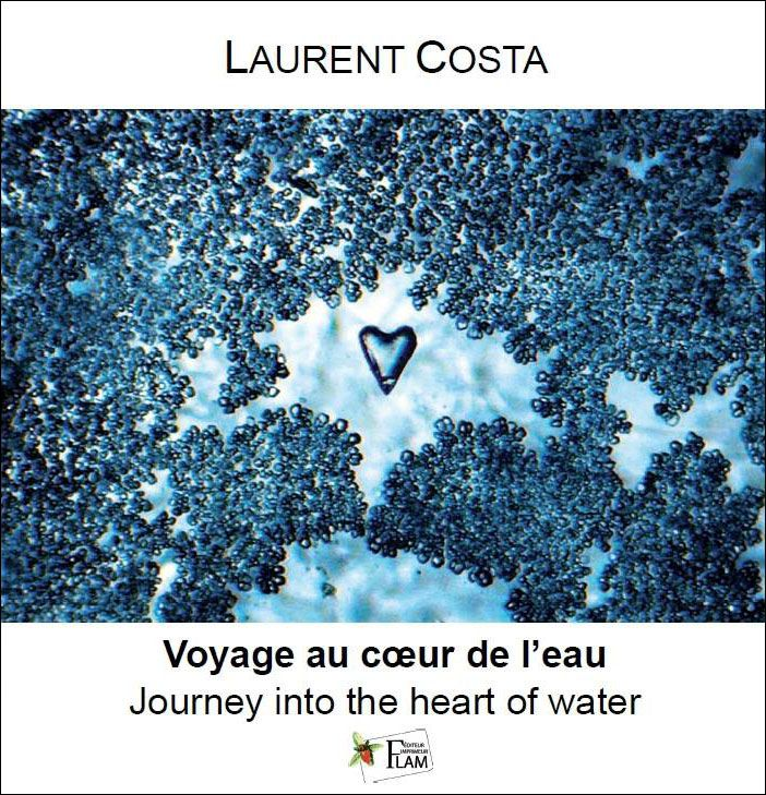 15 best Laurent Costa images on Pinterest   Costa, Aqua and Children