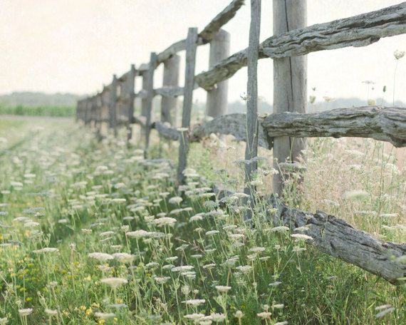 Country Photography Rustic Wall Decor Landscape