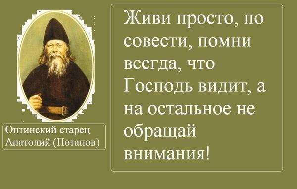 Орехи.ТВ - Категория «Мудрость (цитаты/мысли)»