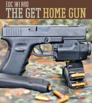 Best Gun For Shtf When Traveling