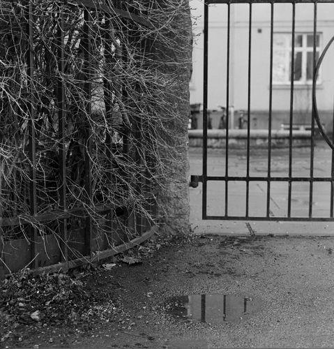Contemporary Art Photography by Mathilde Nicoline Bergersen - #analog - www.mathildenicolinebergersen.com