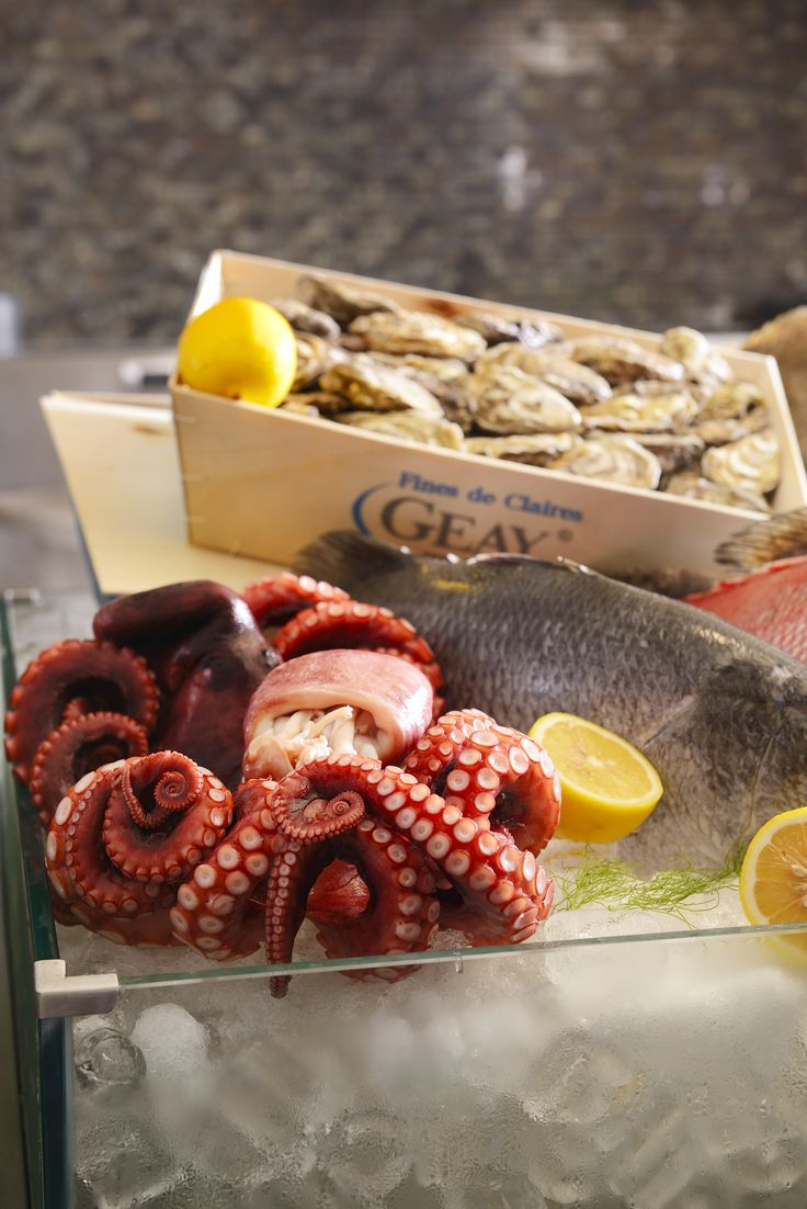Fresh seafood ingredients to create your Mediterranean dishes that will satisfy your appetite. #Mediterranean #Food #Seafood #Ingredients #Flavors #International #Buffet #Lunch #Dinner #Promotion #August #Renaissance #Bangkok #Ratchaprasong #Hotel#squid#oysters