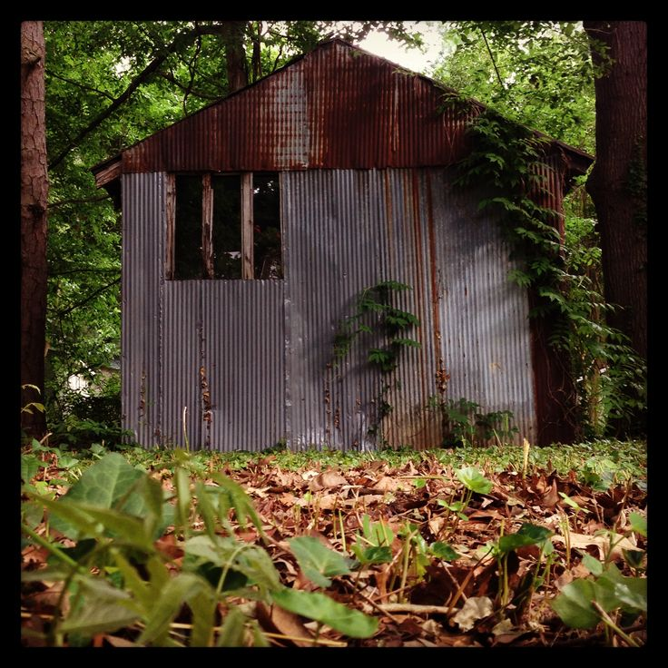 Rusted shed www.swankphotostudio.com