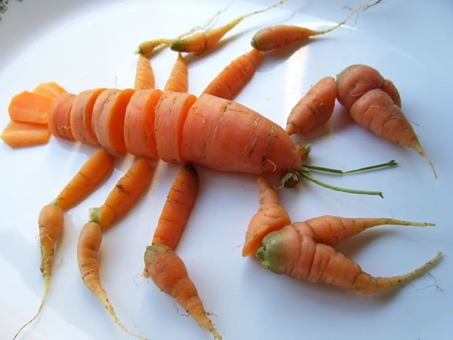 rock lobster? try carrot lobster!
