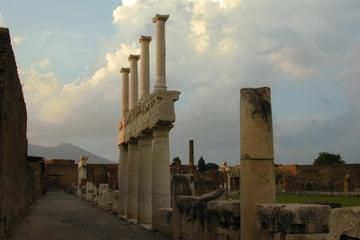 Rome to Pompeii Shuttle Bus & Independent Day Trip 83.00