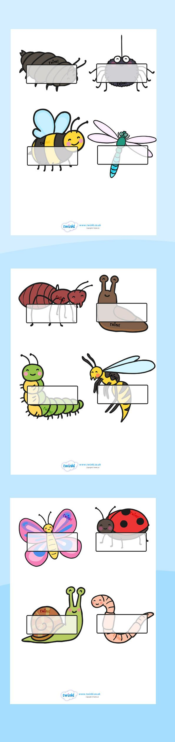 Twinkl Resources >> Editable Self Registration- Minibeasts >> Printable resources for Primary, EYFS, KS1 and SEN.  Thousands of classroom displays and teaching aids! Self Registration, Minibeasts, Topics, Labels, Editable