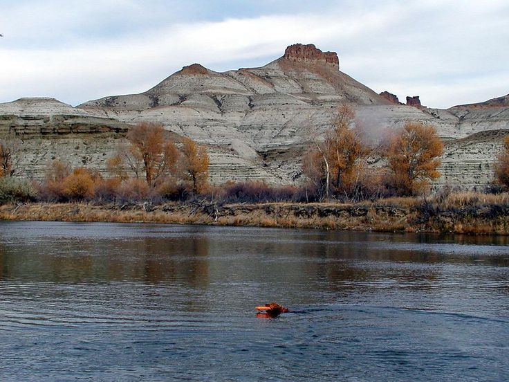 32 Best Flaming Gorge National Recreation Area Images On