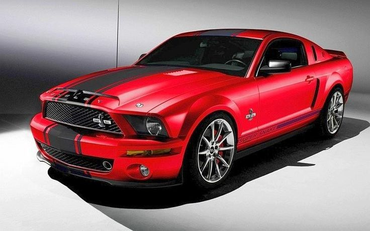 2008 Mustang | 2008 Ford Mustang Supersnake Car Photo | Ford Car Pictures