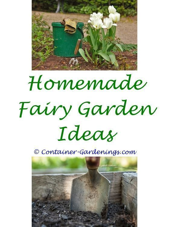 Fairy Garden Ideas For Christmas   Types Of Garden Fencing Ideas.cactus Garden  Ideas Landscape