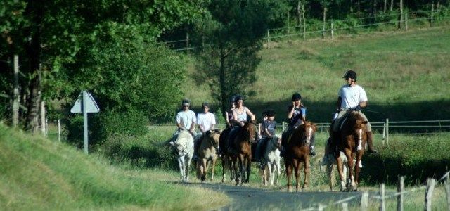 Ferme Equestre au Bos Cheval Rouge - http://www.activexplore.com/activity/ferme-equestre-au-bos-cheval-rouge/