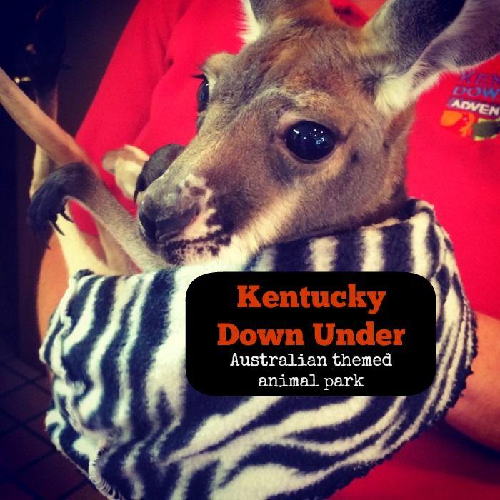 Kentucky Down Under Australian themed Animal Park in Horse Cave, Kentucky