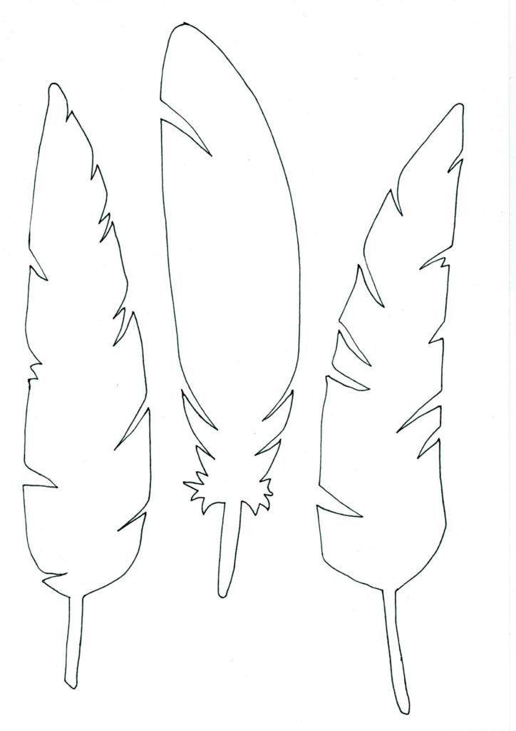 Ptačí peří - šablona