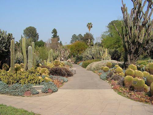 19 Best Jardines Botanicos Images On Pinterest Gardens Botanical Gardens And Succulents