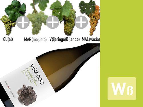 Was bedeutet GUal + MARmajuelo + VijariegoBlanco + MALvasía? Autochthone Rebsorten auf den Kanarischen Inseln