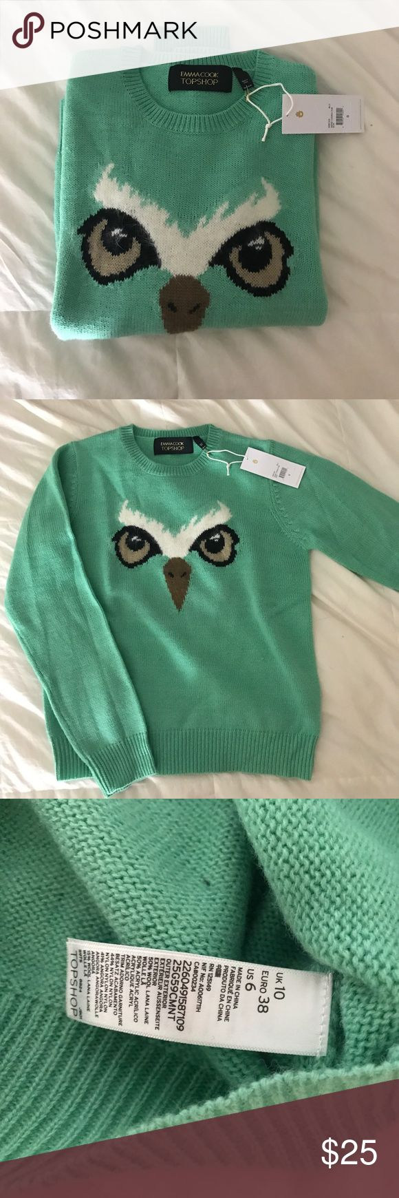 Top shop wool owl sweater Owl sweater from top shop. Collab with Emma cook design. 50% wool 50% acrylic Topshop Sweaters Crew & Scoop Necks