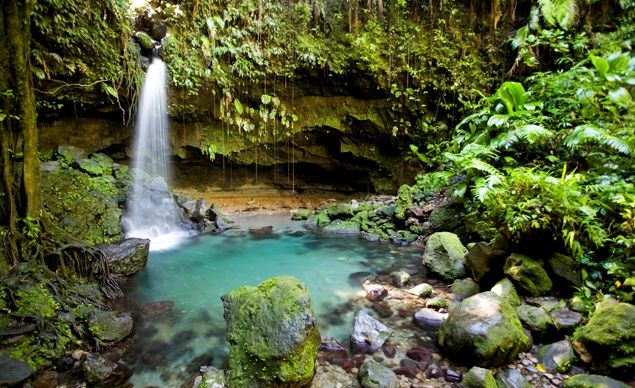 Dominica. (From: 5 Caribbean Islands to Discover Now)