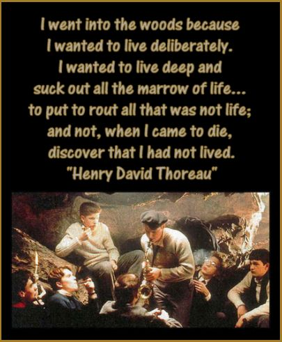 I went into the woods because I wanted to live deliberately. I
