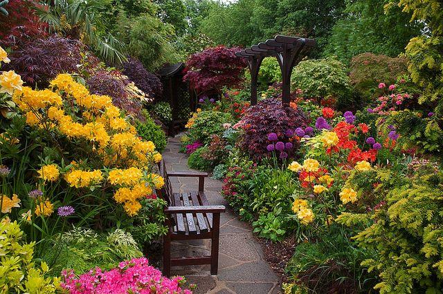 Early morning after rain in lower garden by Four Seasons Garden, via Flickr
