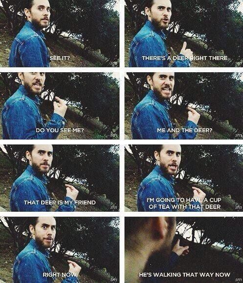 I love this video!! I laugh every time!! Jared Leto