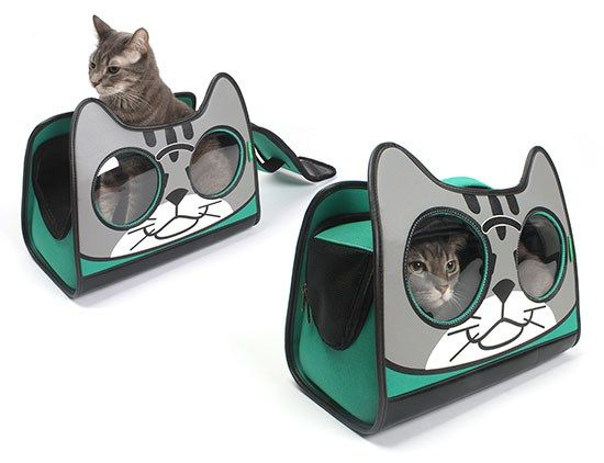 I'm back with another Object of Desire: this adorable cat carrier!