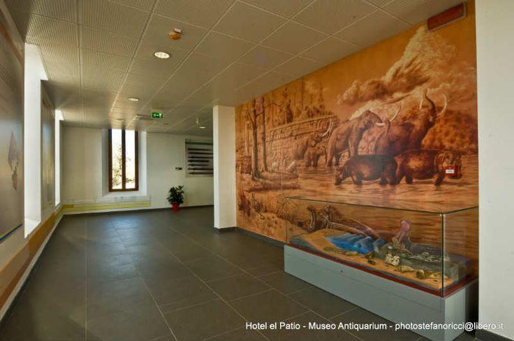 Hotel El Patio Museo Antiquarium (12)