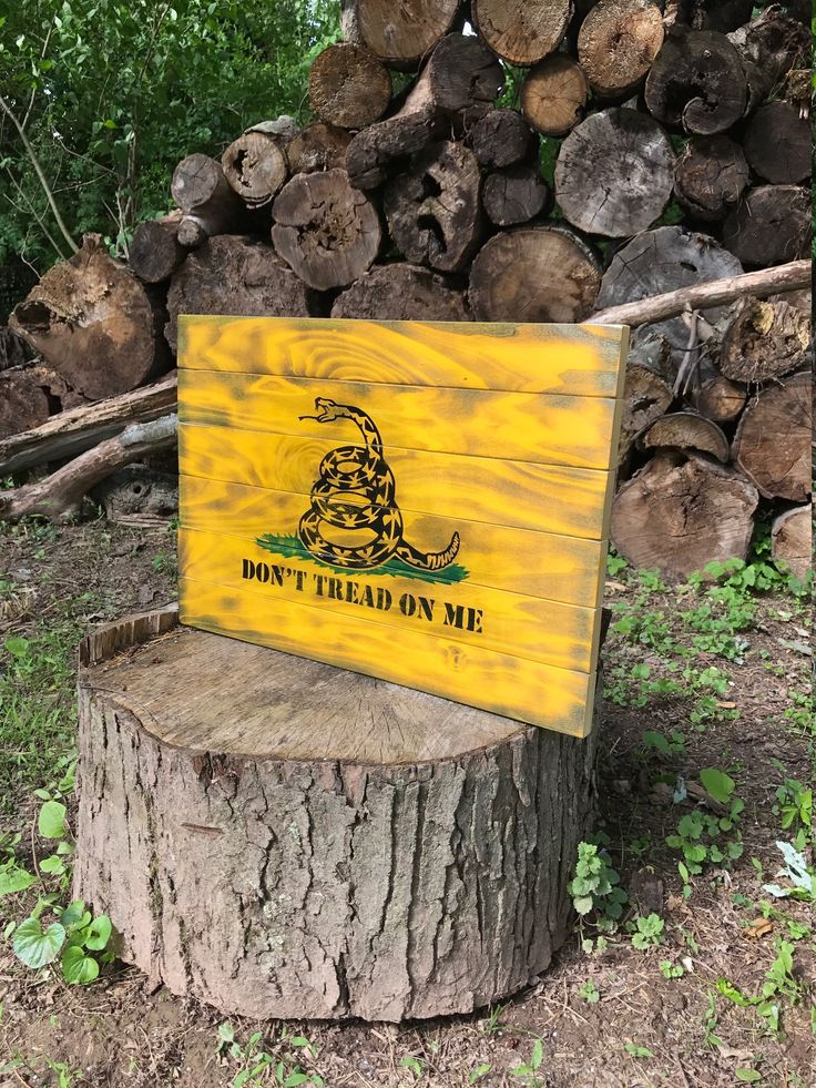 Don't tread on me Gadsden Flag Rustic Cabinet Gun Case Gun Concealment Cabinet Gun Safe Hidden Gun Flag Gifts for him  Wood Flag by JWCraftsmanStore on Etsy