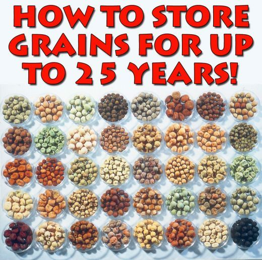 The Survival Guide To Long Term Food Storage