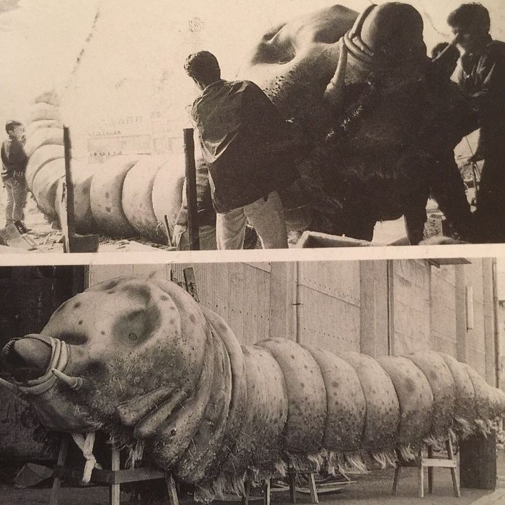 Hard-Boiled Kaijuland : Photo