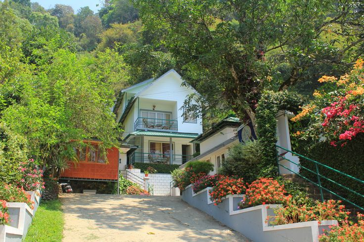 Bella Vista Resort, #Munnar, offers a delightful experience to #guests who need to be close to #nature. With lush green hillocks, exotic views and a clean environment, the resort offers luxurious facilities for a perfect #holiday. #hotels #keraladiaries