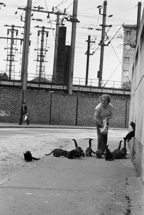 Robert Doisneau. The Wildcats, Rue Bailly 1987 Saint-Denis