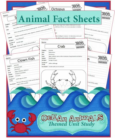 Free Ocean animal fact sheet printables
