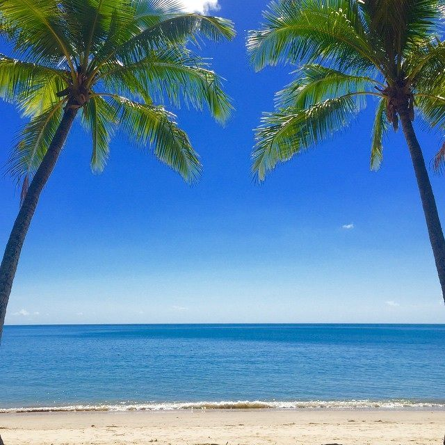 Palm Cove how much more perfect can it get! calm seas and soft sand framed by two palms! #palmcove  #exploretnq  beachmatt #cairns