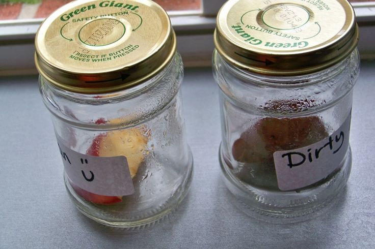 "Apples and Handwashing: ""We put a clean apple slice in one jar.  We passed another apple slice around the class as we came in from recess with dirty hands.  We have been observing the two jars in the science center.  This is the difference after 8 days - gross!  (This picture doesn't really show the mold.)"" - A great way to teach about germs."