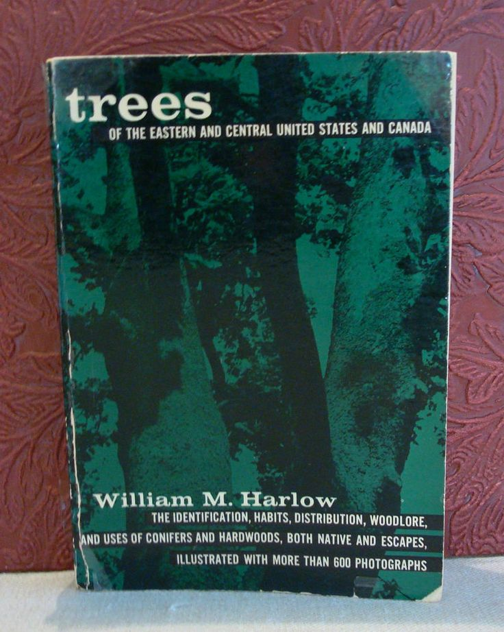 28 best golden guides images on pinterest book shops antique trees of the eastern central united states canada william harlow vintage pb fandeluxe Gallery