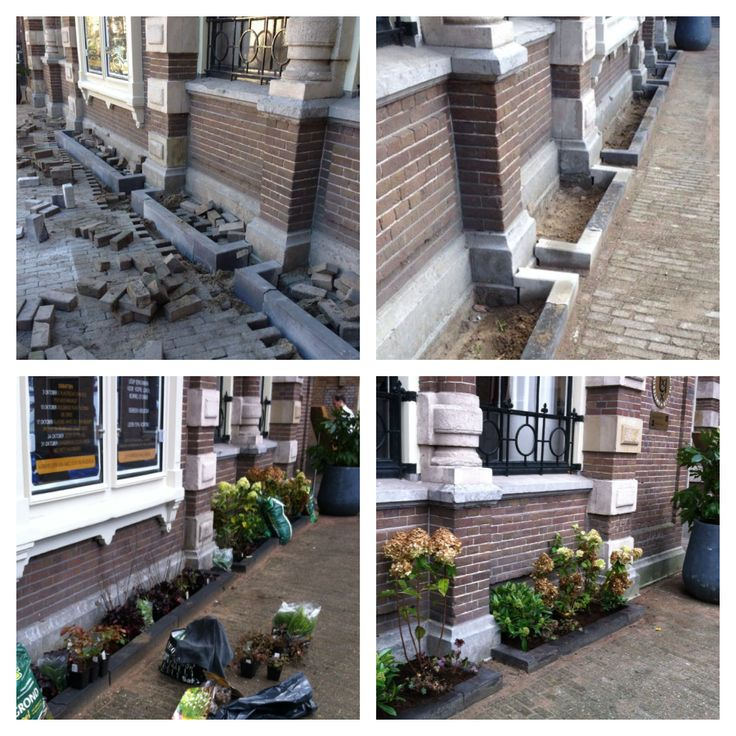 Geveltuin in Amsterdam door DeTuinvrouwen.