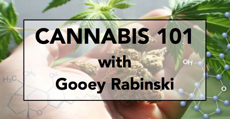 Episode 132: Cannabis Chemistry 101 with Technical Writer Gooey Rabinski