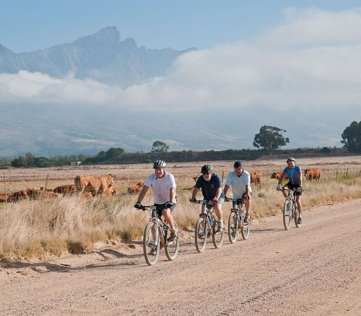 BE ACTIVE | The Tulbagh  Get the most out of your Tulbagh stay with some exploration.  The package includes:      A 2-night luxury stay at The Tulbagh for 2     Homemade breakfast each morning     A gourmet dinner for 2 at Olive Terrace Bistro at The Tulbagh     A half day mountain bike hire to explore the valley     2-Hour horse trek at the foot of the Witzenberg mountains     OR     An enthralling zipslide adventure in neighbouring Ceres  From R3800 per couple